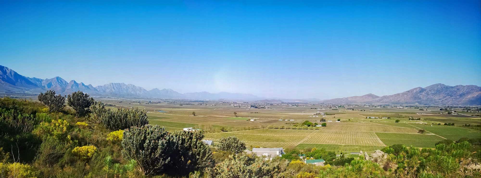 Badsberg Wine Cellar | Rawsonville, Western Cape, South Africa